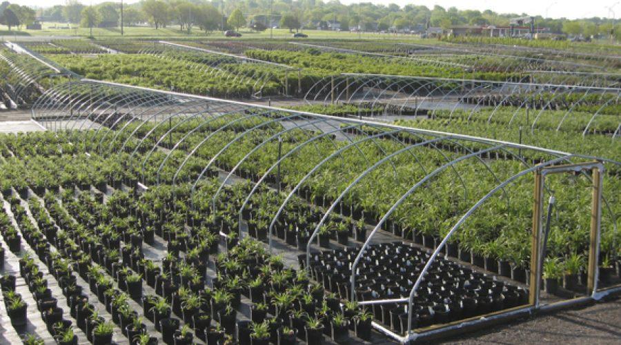 Plant Nursery Management Software
