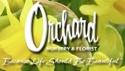 orchard nursery-2016
